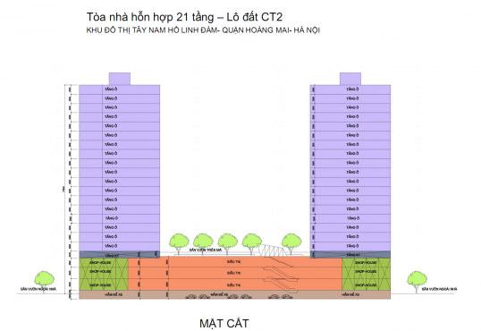 Mặt cắt Chung cư Twin Towers Tây Nam Linh Đàm