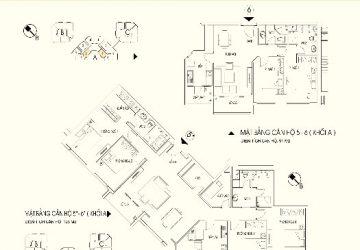 Bán căn 5, 6 Tòa A Chung cư N04 Trần duy hưng giá gốc