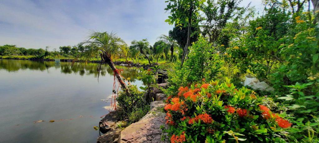 Công viên, Hồ điều hòa Từ Sơn Garden City